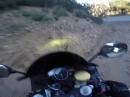 """Motorrad Crash in den Felswand, bleibt die Frage: """"Warum?"""""""