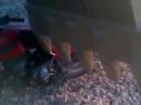 Motorrad starten mit Baggerschaufel -
