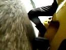 Motorrad Sturzpad / Crashpad rettet einer Triumph 955i Plastik und Rahmen - anschaulich gezeigt