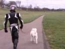 Motorradfahrer Alltag im WINTER - Saisonkennzeichen Schicksal