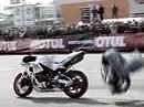 Motorradstunt Osteuropäische Championships - geil geht RICHTIG vorwärts