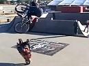 Motorradstunt Patrick Stephens - extrem abgefahren