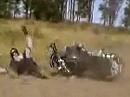 Motorradunfall - Fällt die Kuh bei einem Sprung, geht das Euterfieber um