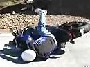 Motorradunfall. Überbremst in der Snake mit Buell - und wieder Glück gehabt