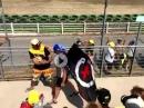 Mutig?! Lorenzo Fan auf Rossi Tribüne in Misano