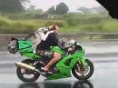 Ninja Hund: Gassi fahren - egal bei welchem Wetter!