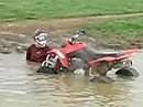 Noch ein Begnadeter - Quadler fliegt über den Lenker da die Vorderräder abrupt verzögern ....