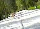 Fahrt in die Kalte Kuchl - OOOPS - Wildwechsel