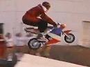Pocket Bike superstunt mit Jovanate den neuen Stern am Himmel