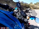 Pure Streetracing - No Mercy! Suzuki vs. Suzuki vs Ducati