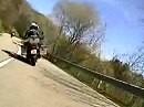Radici Pass abwärts Richtung Reggio - Zu zweit doppeltes Vergüngen beim Kuhtreiben