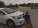 RoadRage: Auto vs Motorrad! Er hat um Haue gebettelt und hat Prügel bekommen...