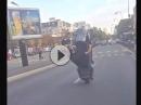 Roller Wheelie - drauf hat er es, aber wrum schreit er?