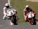 SBK 1996 - Donington (England) Race 2 - Corsers Sieg schwer erkauft.