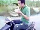 Scooter Frühstück - wehe wenn der blemsen muss ...