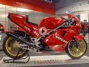 Seltener Traum: Ducati 888 Marco Lucchinelli Replica (1989) - Eine von 20