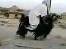 Sensation: Vierzylinder Ziege - Kurdistan steigt in den Motorradmarkt mit Sparmodell ein!