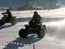 Skijöring Gosau 2008 - Quads open