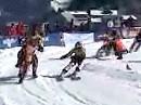 Skijöring Gosau 2010