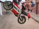 Sprung, Gas, Mauer, Crash, Zerleger - Er ist noch jung und lernt ;-)