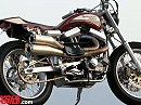 "Street Tracker XR1660 ""The Punisher"" Harley Davidson auf Dope"