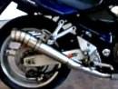 Suzuki GSF 1200 Bandit mit Dan Moto GP Replica Auspuffanlage