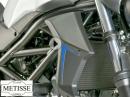Suzuki SV650 Kühler Seitenverkleidung
