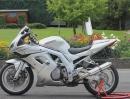 Suzuki SV1000S - Tribute