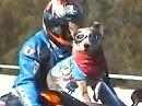 Tex & Cash auf den Hund gekommen - seltsame Ideen haben Motorradfahrer - manchmal