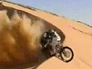 The best from Paris Dakar - Motorcycles