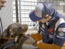 Tierfreund Marc Marquez trifft Marc Marquez den Hund