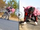 Tigerman Drift Superhero back harder: durchgeknallt, kaputt und geil