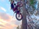Toni Bou: Der Baum - wer sagt dass eine Motorrad nicht klettern kann?