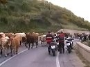 Motorradtour: Sizilien 04