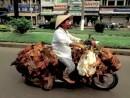 Transportprobleme effektiv gelöst