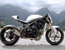 Tridays13 Sondermodell gebaut von Walzwerk Racing Basis Speed Triple