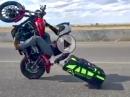 Trolley Wheelie - Motorradurlaub und kein Platz für Packtaschen