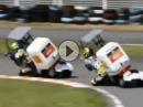 Ü50 MotoGP für Arthritis Geplagte und Ibuprofen Opfer