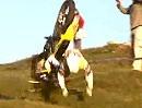 Valverde del Camino (Spanien) - MAXXIS FIM Enduro World Championship 2010