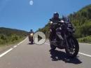 Von Liguerre de Cinca in Richtung El Pocino - Pyrenäen 2015