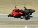 Vorderrad eingeklappt, Crash. Honda CBR 600 ein weiteres Snake Opfer