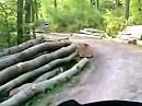 Waldschotterstrecke von Wenzen nach Holzen im Weserbergland