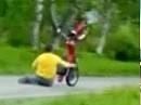 Wheelie - Crash: Bin ich auch richtig im Bild, sieht man alles?