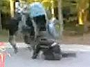 Wheeliecrash - Ich sach noch: Das geht schief, ein Dreirad taugt nicht zum wheelen ...