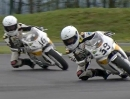 WTR (White Tiger Racing) Minibike Teamvideo 2013