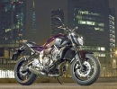 Yamaha MT-07 - NEU: Rise Up Your Darkside -Details