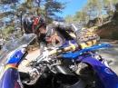 Yamaha R6 Chased Yamaha R1, Ducati Panigale - Geile Bilder!