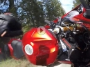 Yamaha R6 Crash - Abflug in den Wald, weil zu früh am Hahn!  Fahrer ok!