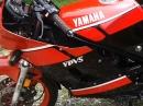 Yamaha RD 350 YPVS Bj. 1986