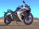 Yamaha YZF-R3 2015, 321ccm Zweizylinder, 42 PS - $ 4999,-